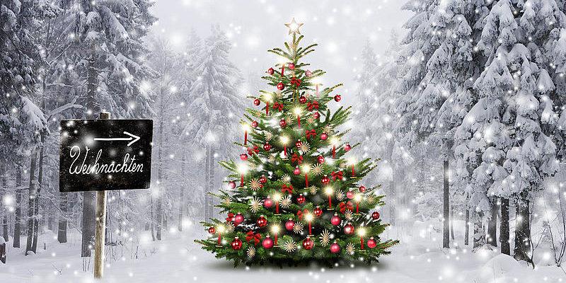 Noël Zengaffinen
